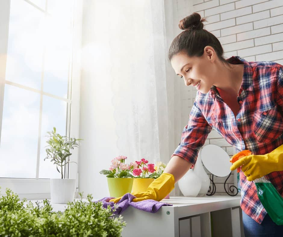 Cleaning Rentals for Other Hosts